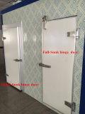 Portão / porta de dobradiça para congelador, quarto frio e refrigerador