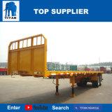 Titan-Fahrzeug - 40 FT-Flachbettbehälter-halb Schlussteil mit Schutzwand