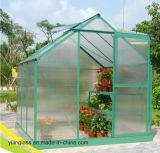 Verre trempé ultra clair Conservatory avec 3,2 mm, 4mm, 5mm, 6 mm Mistlite Nasiji Design