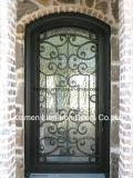 Custom Металлические наружные двери поддельных железной двери начального уровня