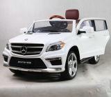 2016 de Nieuwe Hete Rit van Mercedes op Auto Vergunning gegeven 12volt