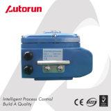 Chinesischer Wenzhou Lieferanten-Drehabsperrvorrichtung-Typ elektrischer Stellzylinder