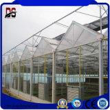Verre en acier galvanisé agricole serre avec Colling ventilateur