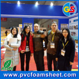 Het paneel Foam Sheet Supplier van pvc Wall in China (zuiver wit Most)