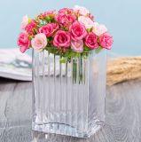 Vaso di cristallo di vetro del mestiere della decorazione di alta qualità domestica del vaso