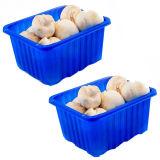 冷凍食品のための大きいサイズPPのプラスチック食糧容器