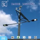 Wind Solar Power Hybrid Street Light (BDLED02)