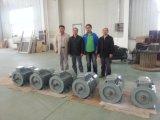 Ff-2kw/200rpm/DC120V Dauermagnetdrehstromgenerator (PMG/PMA/Hydro)
