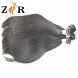 加工されていなくまっすぐなインドのバージンの人間の毛髪の織り方もつれること