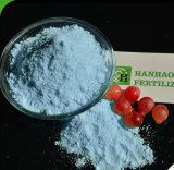 カスタマイズされたNPK水溶性肥料19-19-19+Te NPK
