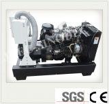 Silencio contenedor de gran potencia 30 Kw BTU grupo electrógeno de Gas de baja