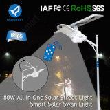 Iluminación al aire libre de la calle solar del LED con 3 años de garantía