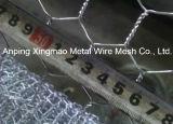 contenitore rivestito esagonale di PVC Gabion /Gabions di 2X1X1m