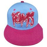 Sombrero caliente de la venta con Niza la insignia Nw048