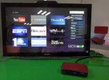 Mini caixa Android do vermelho IPTV com canaletas livres do árabe dos esportes de Bein