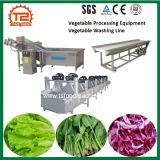 Equipamento de processamento de vegetais vegetais Linha de Lavagem da máquina