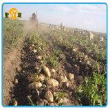 공장 가격을%s 가진 튼튼한 고품질 감자 수확기