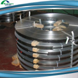 ケーブルの電流を通されたか、または電流を通された鋼鉄か電流を通された鋼鉄ストリップ