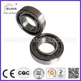 Effectif complet roulement à rouleaux cylindriques (SL)183006