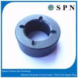 De Magneet van /Ceramic van de Magneet van de Motor van het ferriet voor de Motor van het Huishouden