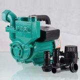 Preiswerte selbstansaugende Wasser-Pumpen-Bewässerung pumpt einphasig-Oberflächen-Pumpe