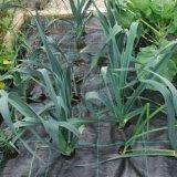 Сад поставляет крышку циновки Weed Contro земную