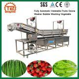 자동적인 Vetetable는 세척 식물성 기계 오존 세탁기 거품 열매를 맺는다