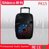 Shinco 최고 판매 대중적인 Bluetooth Karaoke Muitimedia 오디오 스피커 15 인치