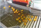 Máquina de classificação de classificação do tomate do limão e do Apple e lavagem encerando a máquina
