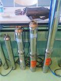 太陽水ポンプDCモーター中国製太陽水家畜はポンプでくむ