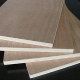 Folhosa da madeira compensada durante todo 2440*1220mm