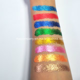 Gama de colores caliente del sombreador de ojos del polvo del brillo de Veronni 24colors de las ventas