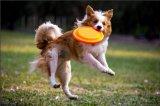 Frisbee della plastica di volo del giocattolo del gioco esterno di prezzi competitivi