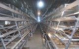 養鶏場のためのタイプフレームの初生鶏及び小さい鶏のケージシステム