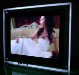 Het Artistieke LEIDENE van de Verlichting van het kristal Frame van de Foto