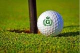 Fördernde Geschenk-Golfball-Stempel