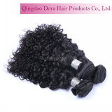 Beste Menschenhaar-Bündel für Großhandelsjungfrau-Schwarz-malaysisches Haar spinnen lockiges