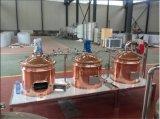 100L de rode Apparatuur van het Bierbrouwen van het Koper Kant en klare