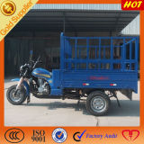 China Manufacturing Special Three Wheels Mini Truck