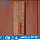 Un tipo stanza asciutta di legno di sauna del Singolo-Portello (M-6034) delle 2-3 persone
