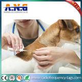 Étiquette en verre d'IDENTIFICATION RF passive claire de LF/animal sans contact suivant des étiquettes avec la seringue