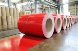 Высокое качество PPGI PPGI PPGI цветные листы стали в катушек зажигания