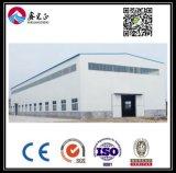 Armazém personalizado alta qualidade da construção de aço (BYSS033)