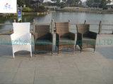 Hz-Bt126 Pátio Exterior sofá de vime sofá em vime Mobiliário de Jardim