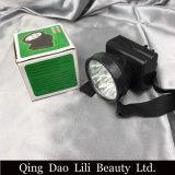 Lámpara de escritorio de la extensión plegable de la pestaña de Lilibeauty para el salón de belleza
