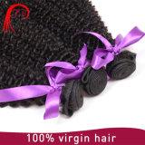 100% 사람의 모발 연장 곱슬머리를 길쌈하는 처리되지 않는 인도 Virgin 머리