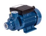 Высокое качество поверхности внутренних периферийных водяного насоса с CE (QB-60)