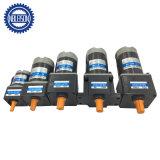 10n. M 20n. M de alto torque a baja velocidad de 12V 60W 24V 90V DC motorreductor