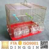 Populares jaulas de aves en venta