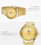 Конструкция шкалы ногтя wristwatch диаманта способа Belbi специальная для женщин делает черноту водостотьким золота серебряную сделанную в оптовой продаже OEM поддержки фирменного наименования Китая